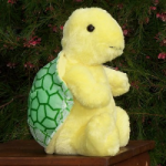 Adorable and Plush Terri the Turtle
